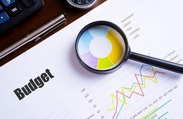 Citizen's Budget: